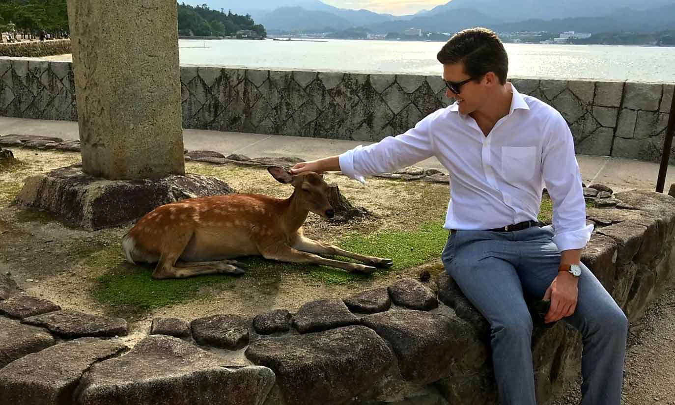 Petting Deer in Miyajima