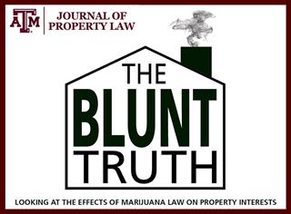 blunt truth logo